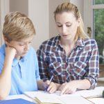 Female Home Tutor Helping Boy With Studies